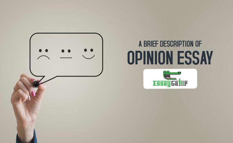 A Brief Description On Opinion essay