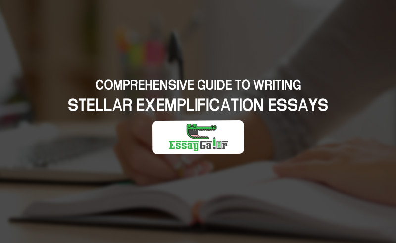 A Comprehensive Guide To Writing Stellar Exemplification Essays